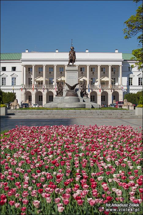 http://www.ziolek.pl/fotografie/warszawy/ulice/zdjecie01.jpg